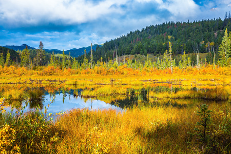 Warm autumn in the Rocky Mountains of Canada. Charming Patricia Lake amongst the yellow grass and distant mountains