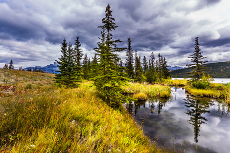 Rocky Mountains of Canada. Rain clouds hover over the valley along the Pocahontas road. Slender spruce is reflected in the water of the lake. Concept of active and photo-tourism