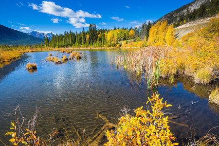 The superficial lake Vermilion among mountains and the woods. Indian summer in the Rocky Mountains of Canada Stock Photo