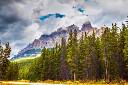 Beautiful nature of the Rocky Mountains of Canada. Evergreen coniferous forests, majestic mountains and the turned yellow autumn bushes 免版税图像