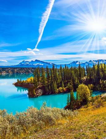 Evergreen forest surrounds the azure lake. Magnificent landscape. Artificial Abraham Lake in the Rocky Mountains of Canada. The concept of active, ecological and photo tourism