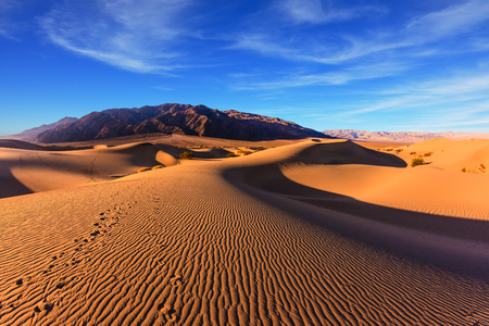 Waves of orange sand on top of the dunes. Sunrise. Desert in Mesquite Flat, Death Valley, USA. The photo was taken Fisheye lens