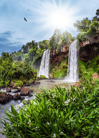 Two waterfalls from the Iguazu Falls in Argentina. Hot tropical sun illuminates the rumbling waterfalls. The concept of extreme and ecological tourism 写真素材