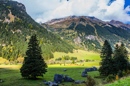 The surroundings of the famous road Grossglocknerstrasse in the Austrian Alps. Great sunny day. The coniferous forests on the mountain slopes. The concept of environmental, photo tourism