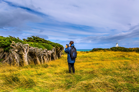 An elderly lady is photographing a strange horizontal forest that forms the wind from Antarctica.   Great trip to New Zealand. The concept of exotic, active and phototourism Stockfoto
