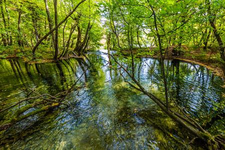 Czerwono - pomarańczowe liście jesiennych drzew. Pojęcie turystyki ekologicznej, aktywnej i fototurystycznej. Jeziora Plitwickie w pochmurny dzień. Chorwacja
