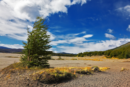 The endless expanse of Patagonian pampas. Southern Chile Standard-Bild