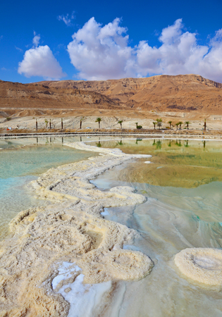 Israeli coast of the Dead Sea. The path from salt picturesquely curls in salty water. Palms are reflected in smooth water ashore
