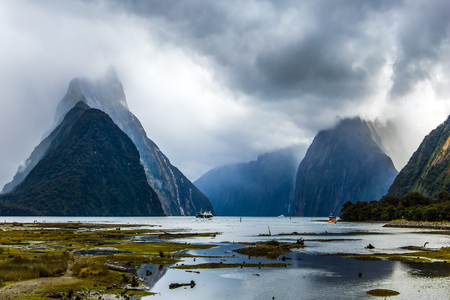 New Zealand - land of goblins. Swampy, overgrown with marsh grass coast of the Milford Sound fjord.The storm clouds. Concept of exotic, active and photographic tourism Banco de Imagens