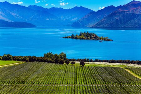New Zealand, South Island. Picturesque vineyard descends down to the water. Adorable little island in the Lake Wanaka. The concept of ecological and photo tourism. Greeting postcard