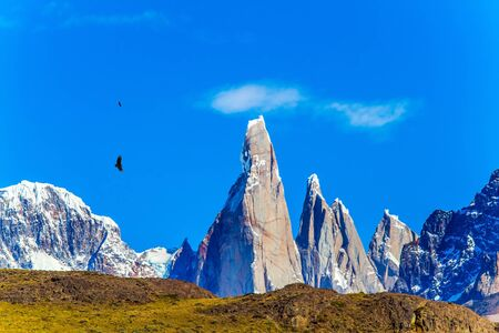 Huge Andean condors fly in the sky. Magnificent mountain range, illuminated by the sunrise. Fitzroi - mountain peak in Patagonia. The concept of extreme, active and photo tourism 写真素材