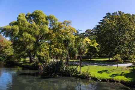 Shady avenue goes along a calm river. Rather river flows through the park. Indian summer in New Zealand, South Island. The concept of ecological and photo tourism. Christchurch Scenic Botanical Garden 스톡 콘텐츠