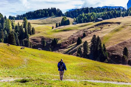 Elderly tourist with backpack travels in Tyrol. Alpe di Siusi is charming plateau in the Dolomites, Italy. Indian summer in the Dolomites. The concept of walking, ecological and photo tourism Banco de Imagens