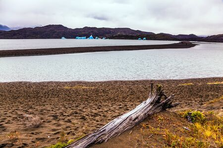 Blue icebergs float on the water. Lago Gray is a glacial lake in February. Chile. Concept of active and exotic tourism