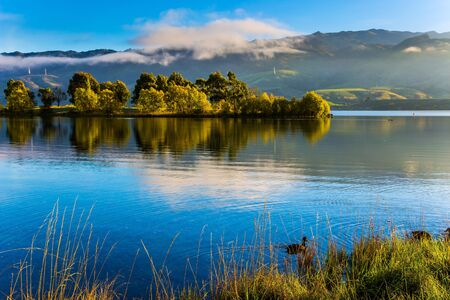 Flock of ducks swims in smooth water. Early morning. Huge quiet lake on the way to Queenstown. Scenic Spots of New Zealand. The concept of active, ecological and photo tourism