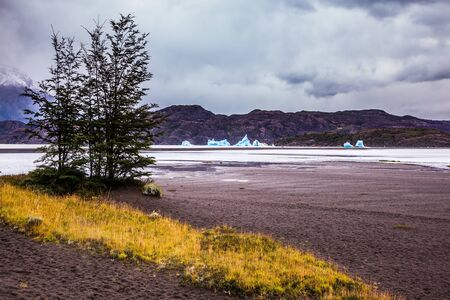 Lago Gray is a glacial lake in February. Blue icebergs float on the water. Chile. Concept of active and exotic tourism