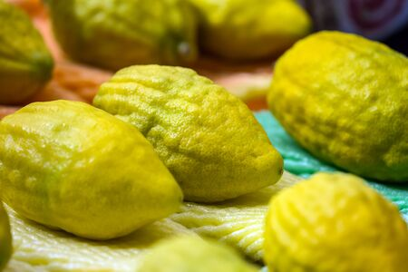 Etrog is a ritual citrus fruit. Jewish autumn holiday Sukkot - Feast of Tabernacles. One of the main holidays of the Jewish people. The concept of religious, ethnographic and photo tourism Stockfoto