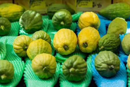 Etrog is a ritual citrus fruit for celebratory prayer.Jewish autumn holiday Sukkot. The concept of religious, ethnographic and photo tourism Stockfoto