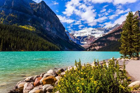 Glacial Lake Louise in Banff National Park, Canadian Rockies. The picturesque lake with azure water is surrounded by mountains and forests. The concept of ecological, active and photo tourism 写真素材