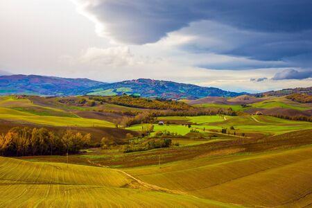 Collines pittoresques de la légendaire Toscane. Agrotourisme. Fermes rurales. Oliviers sur les prairies herbeuses vertes. Belle Italie.