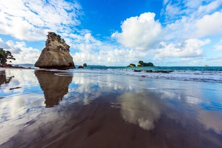 Ocean tidal wave in the Cathedral Cove. Mirror reflections of clouds in wet sand. The far end of the earth. Travel to New Zealand. The concept of exotic, ecological and photo tourism 版權商用圖片