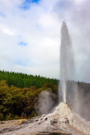 The world famous Lady Knox geyser. The maximum of a daily eruption. The largest geyser-like feature in the world. North Island, New Zealand. The concept of exotic, ecological and photo tourism 版權商用圖片