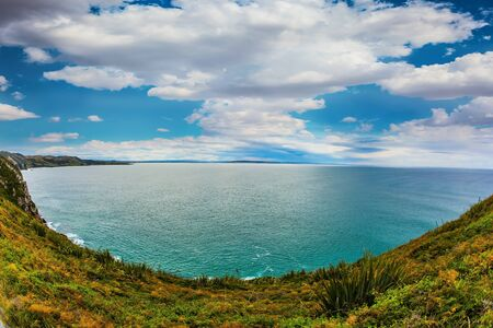The steep slopes of the grass coast. New Zealand. The Pacific Ocean near Nugget Points. The concept of active, environmental and photo tourism