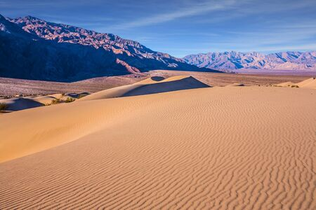Easily accessible dunes are located along Road 190. Magical desert morning. Mesquite Flat Sand Dunes - dunes in Death Valley. USA, California. The concept of extreme, active and photo tourism