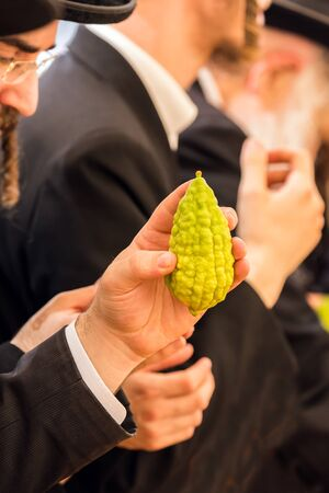 Religious Jew with sidelocks chooses etrog for the holiday Sukkot. The annual pre-holiday bazaar in Jerusalem. The concept of religious, ethnographic and photo tourism
