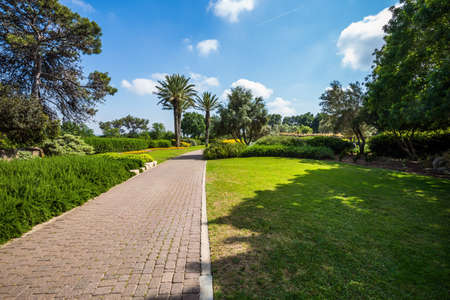 Stone paved scenic walkway. Warm sunny day. Great walk in a clean well-kept park. Israel. The magnificent botanical park on the slopes of Mount Carmel