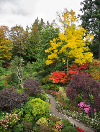 Charming multi-colour flower bed and footpath in well-known Butchard-garden in Canada