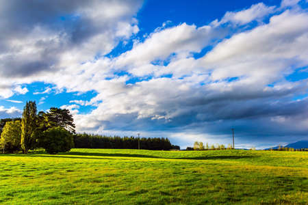 Lush cumulus clouds are lit by the sun. Southern Scenic Route. Green fields are surrounded by trees. South Island of New Zealand. The concept of active, environmental and photo tourism