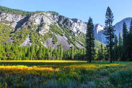 The monolithic rock El Capitan and majestic mountains surround the Yosemite Valley. The picturesque park in California, USA. The park is located on the slopes of the Snowy Mountains.
