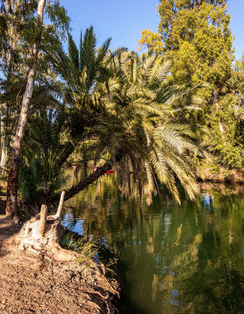 Israel. The fine winter sunny day. Wonderful walk along the river. The Jordan River is the most famous river in the world. Jordan is the place of the baptism of Christ. 写真素材