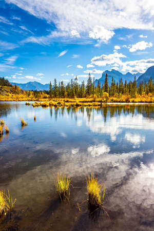 Lake Vermillon among the yellow fall grass, birches and aspens. Indian summer in the Rocky Mountains. Grandiose landscape in the Canada. The concept of photo tourism
