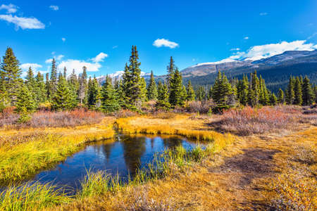 Picturesque puddles around Bow Lake. Cold sunny autumn day. The majestic Rocky Mountains of Canada. Alberta. The blue sky is reflected in the water