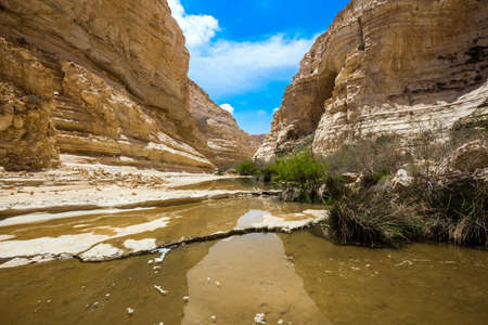 The magnificent gorge Ein Avdat is the most beautiful in the Negev desert. Start route. Israel. The gorge is formed by the waters of the Qing River. The concept of active and photo tourism Фото со стока