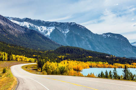 Asphalt highway leads to Abraham Lake. The yellow foliage of birches and aspens is mixed with green conifers. The first snow has already fallen on the peaks of Canadian Rockies.