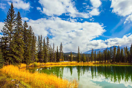 Jasper Park in Indian summer. The Rocky Mountains, Canada. Small round lake with cold green water. Coniferous forest reflected in water. Travel and photo tourism concept