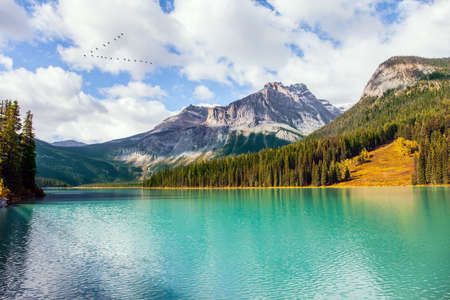 The Canadian Rockies. Mountain peaks and coniferous forest surround Emerald lake with azure water. Sunny day. The concept of active, ecological and photo tourism Фото со стока