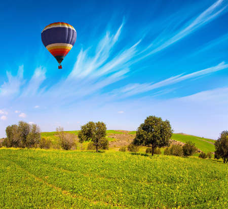Fields of spring flowers in the bright southern sun. Bright multicolor hot air balloon flies over the field. Beautiful sunny day in April. Spring bloom of the Negev Desert in Israel.