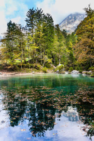 Slovenia. Cloudy foggy day. Julian Alps. Shallow lake with glacial greenish water, covered with yellow and orange fallen leaves. Autumn forest and cloudy sky are reflected in the lake