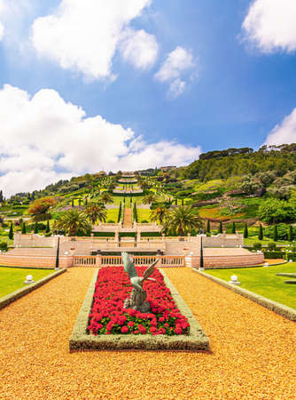 Luxurious flower bed with bright red flowers. The slope of Mount Carmel. Haifa, Israel. Bahai World Center. Pilgrimage center and popular tourist destination.