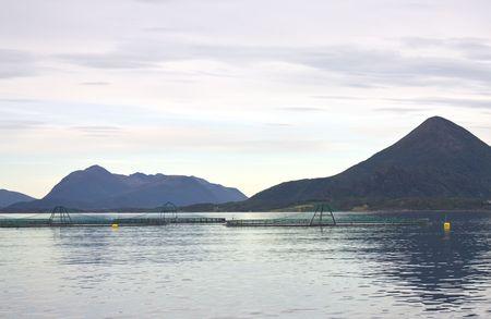 fjord: Fish farms in Norwegian fjord. Stock Photo