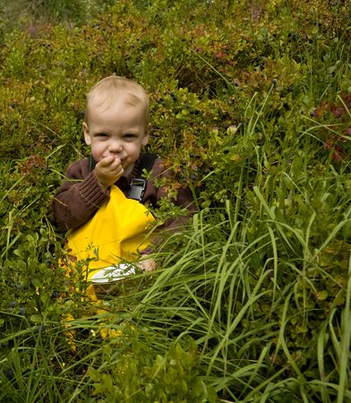 Toddler (one year old) sitting in a forest eating bilberries (european blueberries). photo