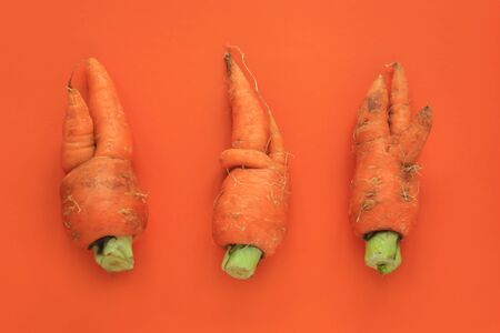 Ugly food. Deformed organic carrots on pastel background in green and orange duoton. Bright contrast colors. Misshapen produce, food waste problem concept. Minimal style, pop art. Flat lay. top view.