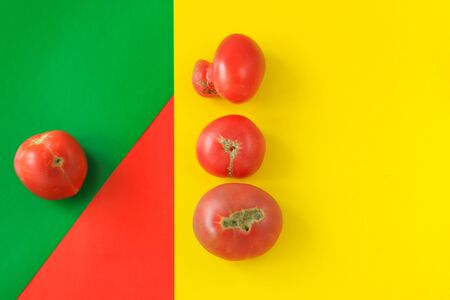 Ugly food concept, deformed tomatoes on the red, yellow and green background, copy space, minimalistic style, creative geometric image. Banco de Imagens