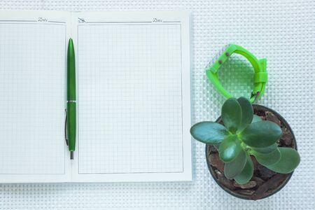 Fashion notebook, green wrist watch, succulent Money tree in a pot and pen on white textured background. Minimal work space, stylish stationery, office tools, working supplies. Top view, flat lay.
