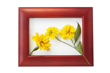 Brown wooden photo frame with yellow flowers on a white background. Hello autumn card. Home interior decor, mockup, space for text. Beautiful nature, vintage colors, minimal style concept. Copy space.