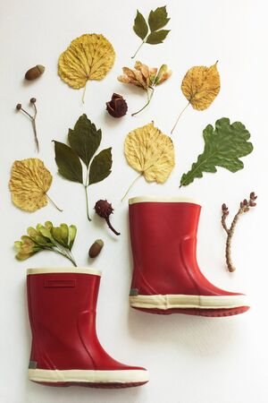 Red rubber boots on a white background. Autumn fall concept with colorful leaves and rain shoes flatlay, top view, copy space. Stock Photo